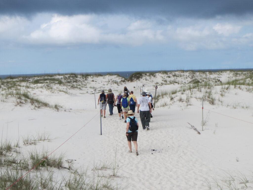 Pine Beach Trail at Bon Secour National Wildlife Refuge.