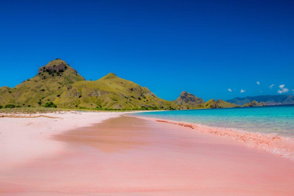 Pink Beach at Komodo National Park.