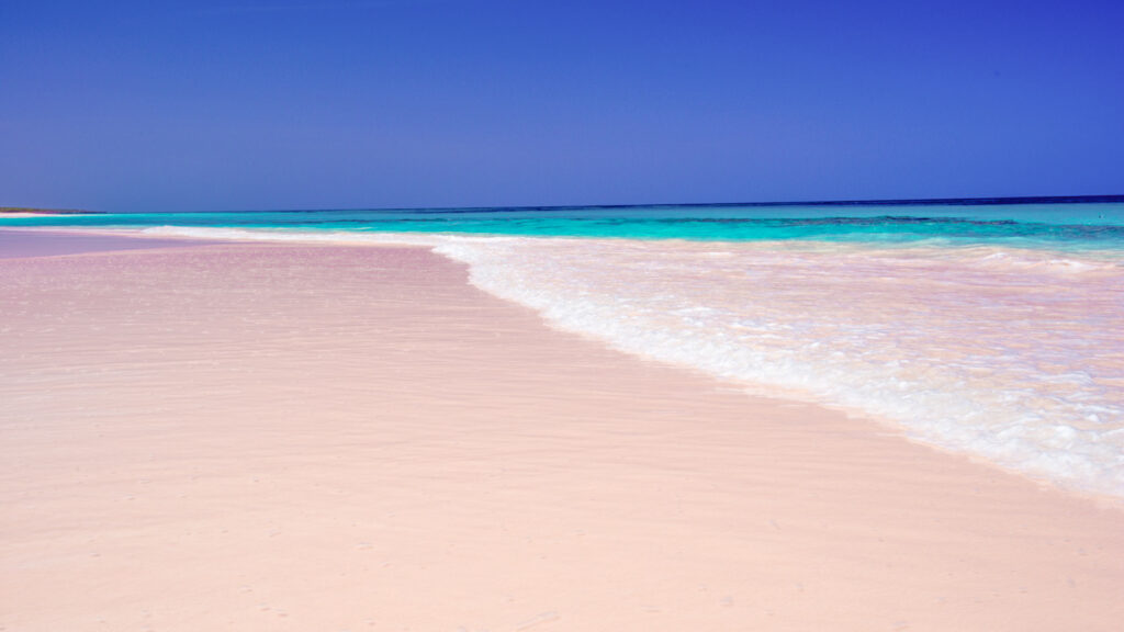 Pink Sands Beach in the Bahamas.