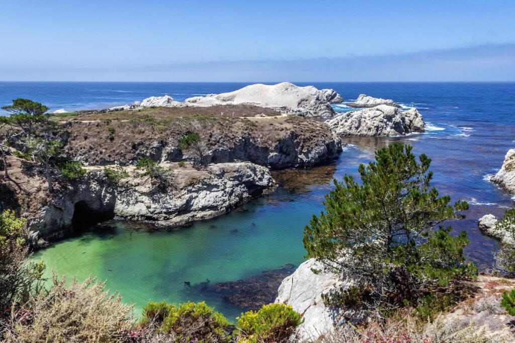 Point Lobos State Park in Big Sur, California.