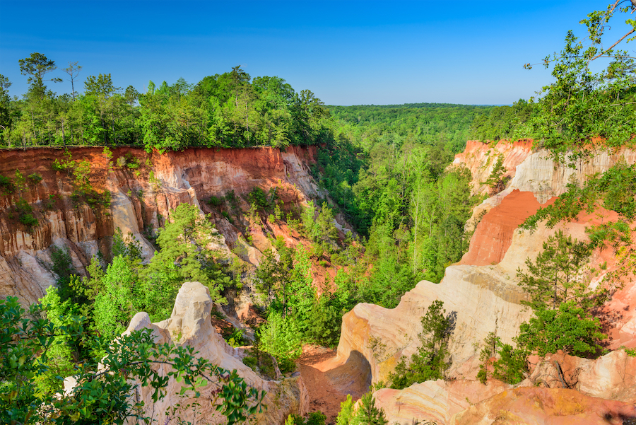 Providence Canyon State Park in Lumpkin, Georgia.