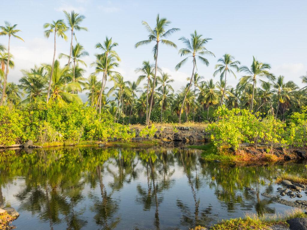 Puuhonua o Honaunau National Historical Park in Hawaii.