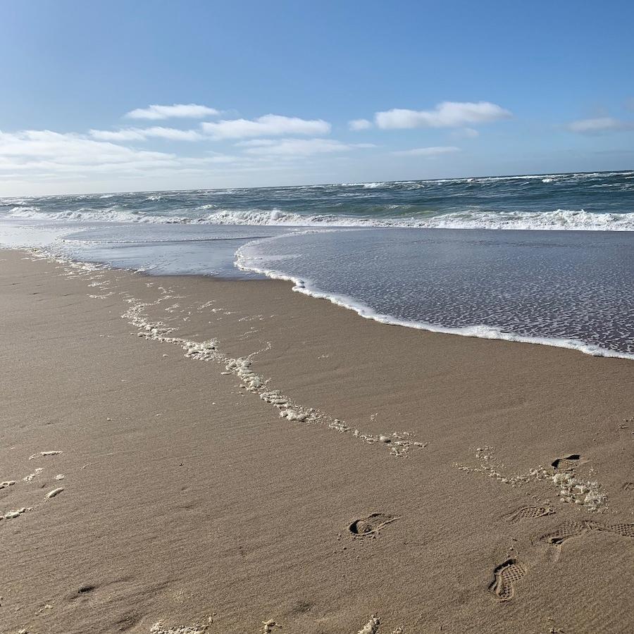 Race Point Beach in Cape Cod.