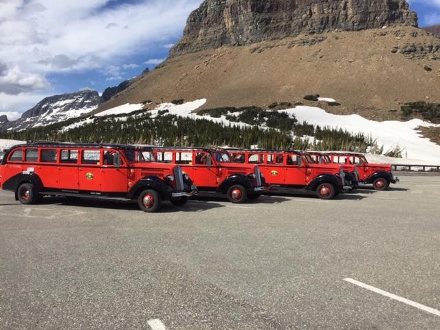 Red buses at Glacier.