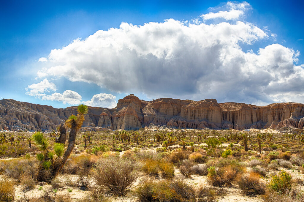 Red Rock Canyon State Park in California.