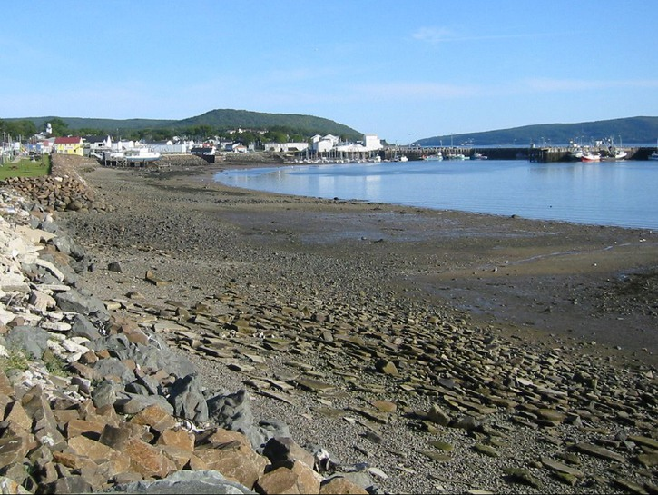 Rocky shoreline on Digby Harbour