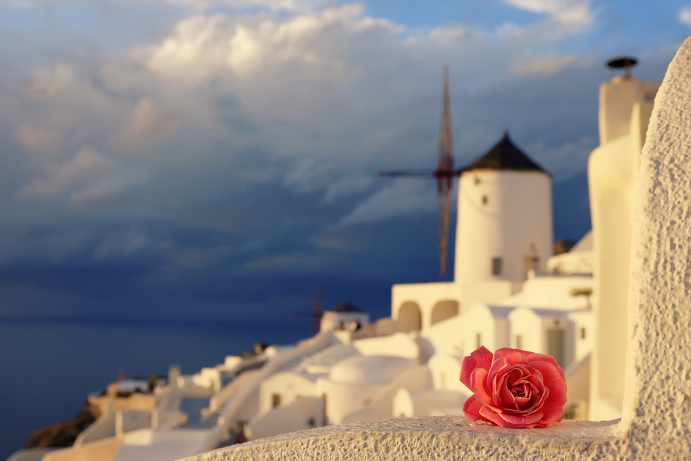 rose with Greece landscape in background