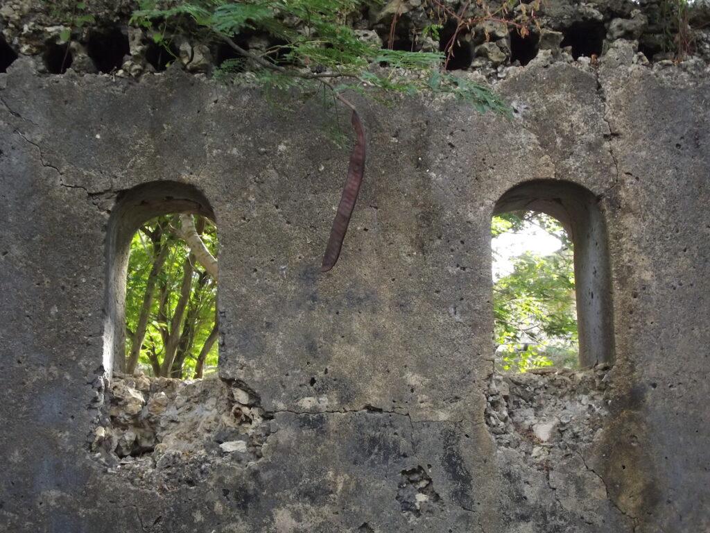 Ruins on Mafia Island in Tanzania.