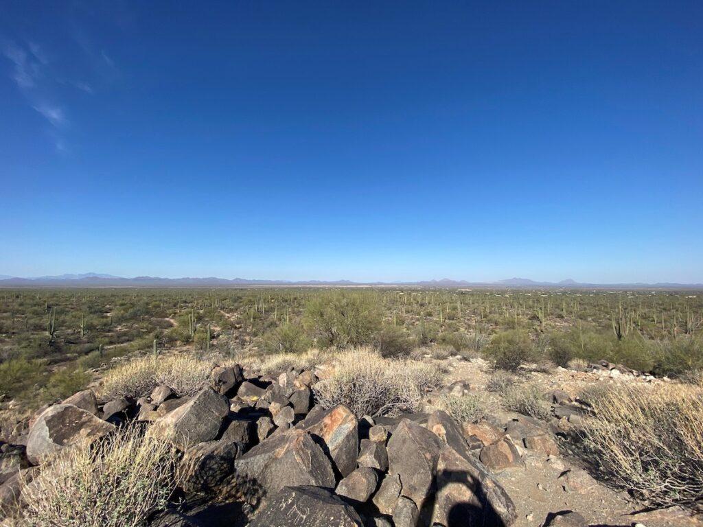 Saguaro National Park, Signal Hill Petroglyphs.