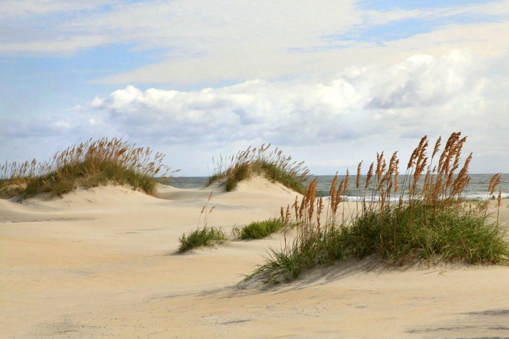Sand dunes in North Carolina.