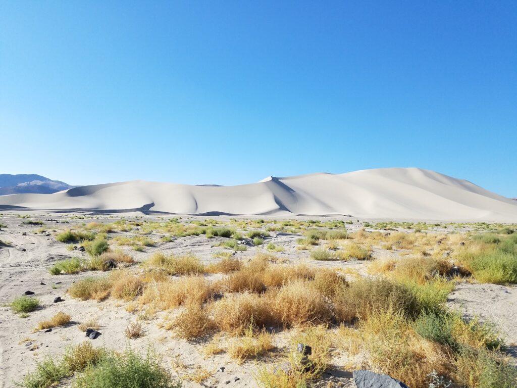 Sand Mountain in Nevada.