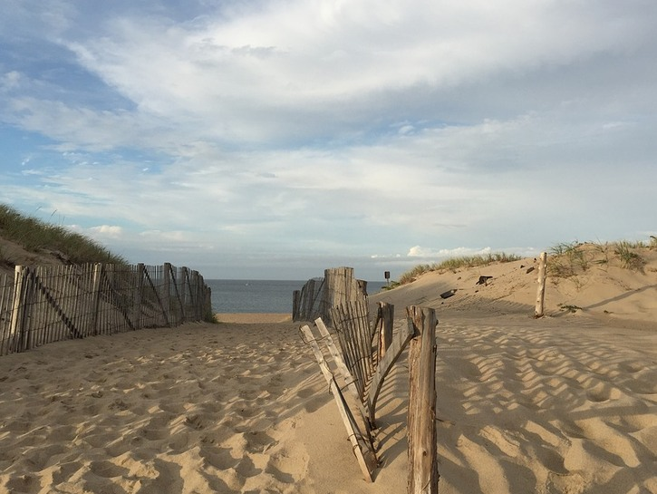 Sand walkway to the dunes in Provincetown.