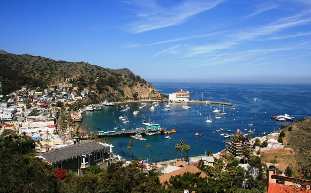 Santa Catalina Island in California.