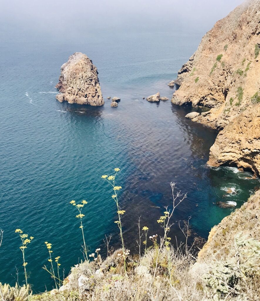 Santa Cruz Island, Channel Islands National Park.