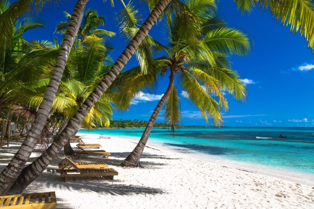 Saona Island in the Dominican Republic.