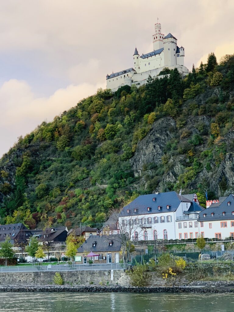 Scenery from a wine cruise on the Rhine River.