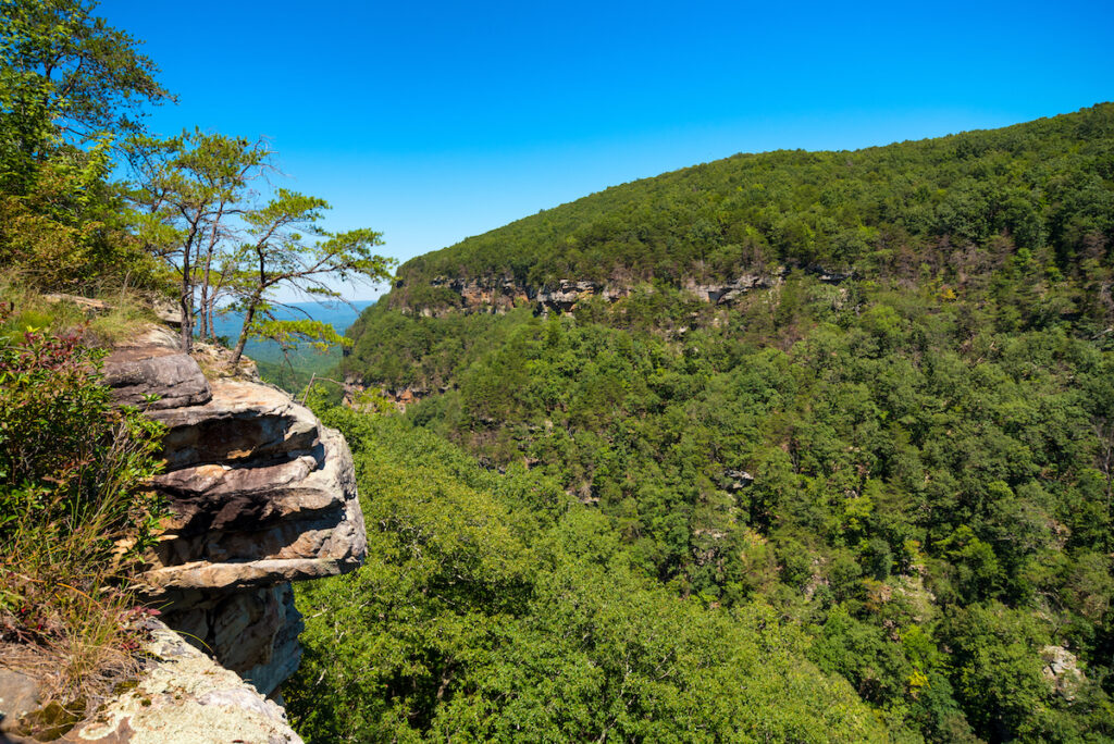 Scenic views from the Overlook Trail at Cloudland Canyon.
