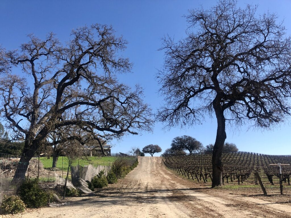 Sculpterra Winery and Sculpture Garden in Paso Robles.