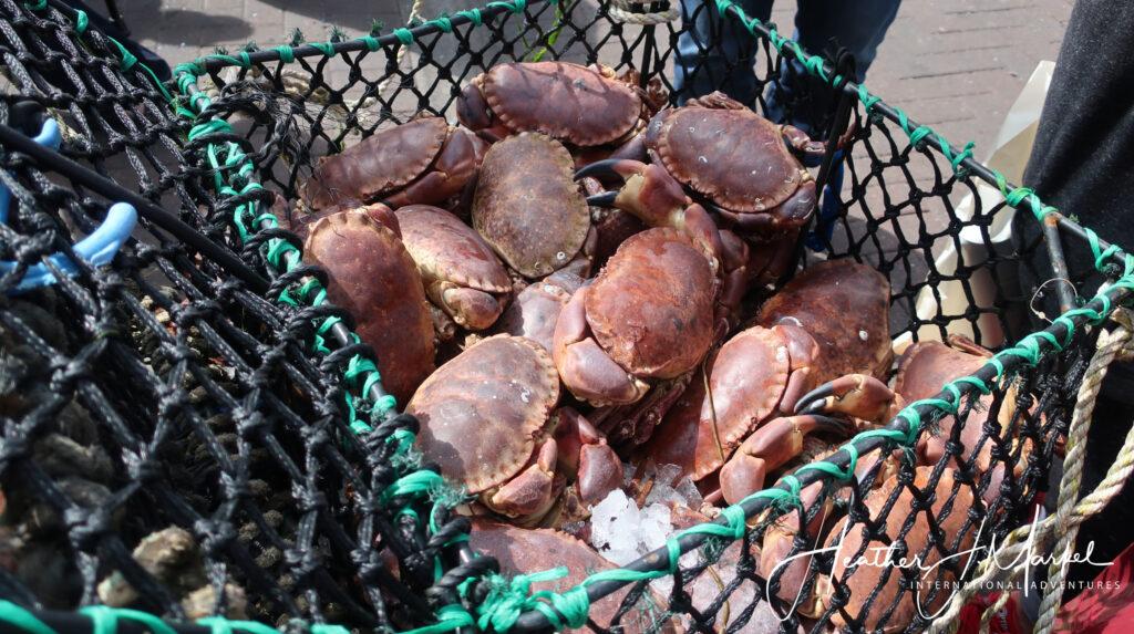 Seafood in Oban, Scotland.