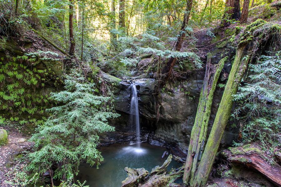 Sempervirens Falls in Big Basin Redwoods State Park.
