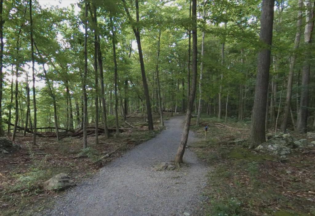 Seneca Rocks Trail in West Virginia.