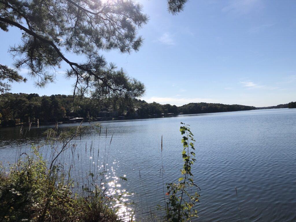 Serene view of Lake Hamilton.