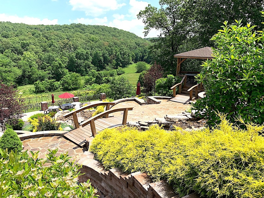 Seven Springs Winery and Vineyard in the Ozarks.