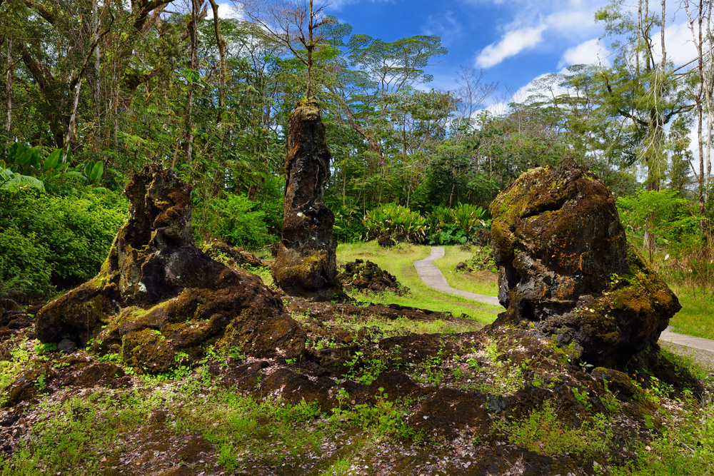 Lava molds of the tree trunks that were formed when a lava flow swept through a forested area in Lava Tree State Monument on the Big Island of Hawaii, USA