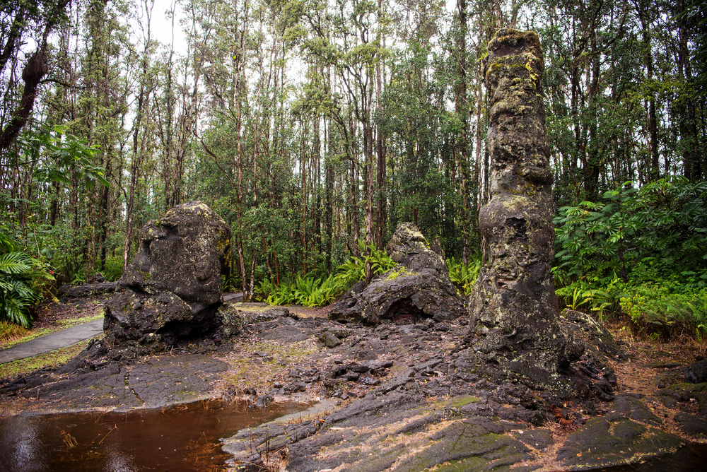 Lava trees at Lava Tree State Monument in the Puna District of the Big Island, Hawaii