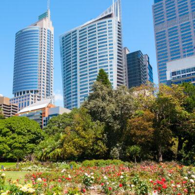 Royal Botanic Garden in Sydney.