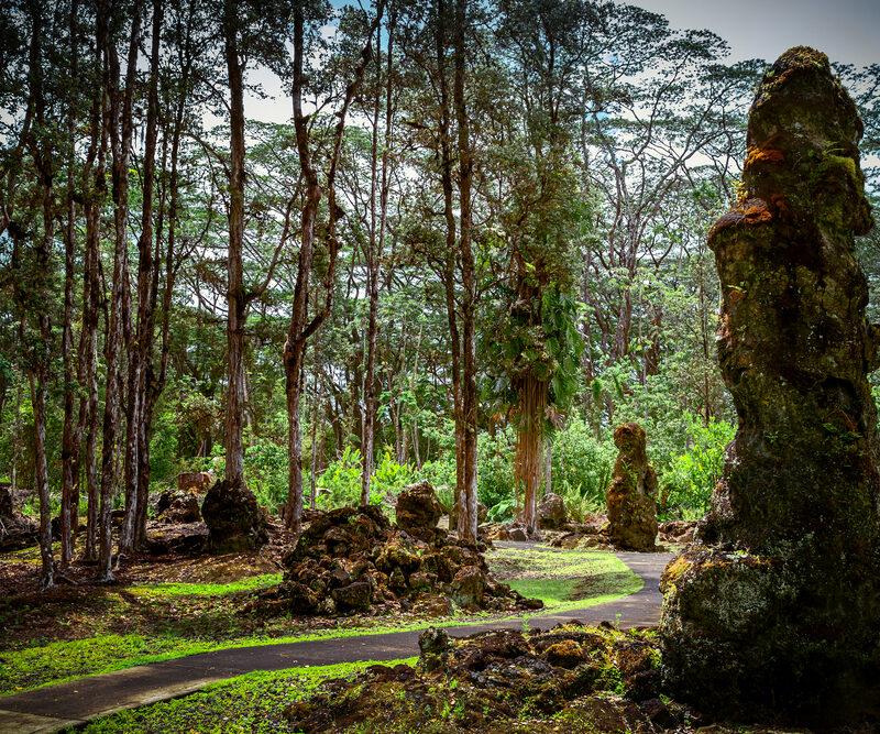 Lava Tree Park In Big Island, Hawaii