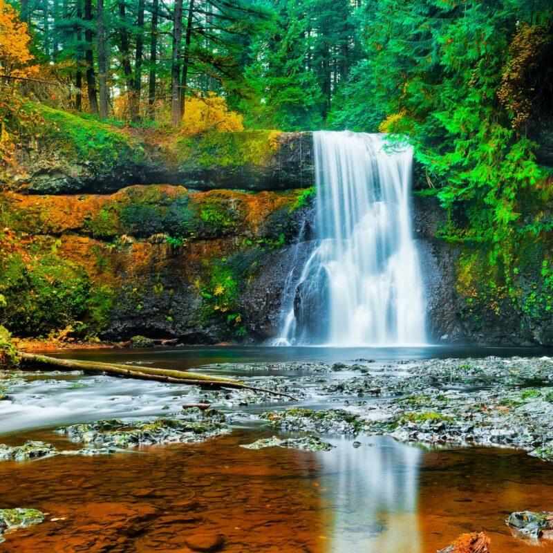 Silver Falls State Park in Oregon.