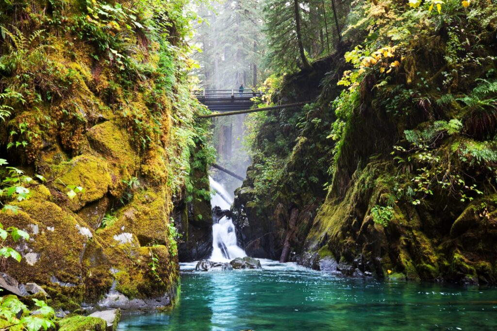 Sol Duc Falls at Olympic National Park.
