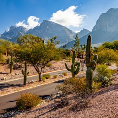 Sonoran Desert views in Oro Valley, Arizona.
