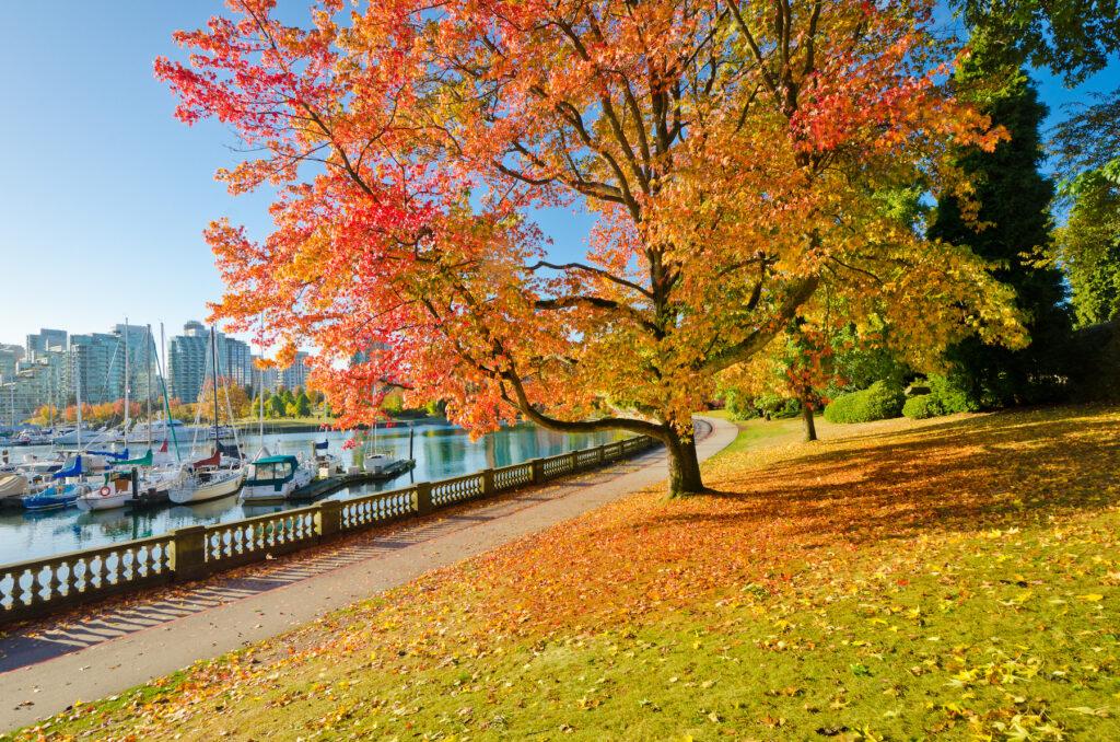 Stanley Park in Vancouver, Canada.