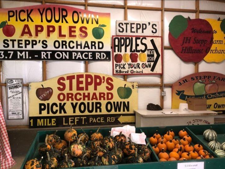 Stepp's Hillcrest Orchard in North Carolina.