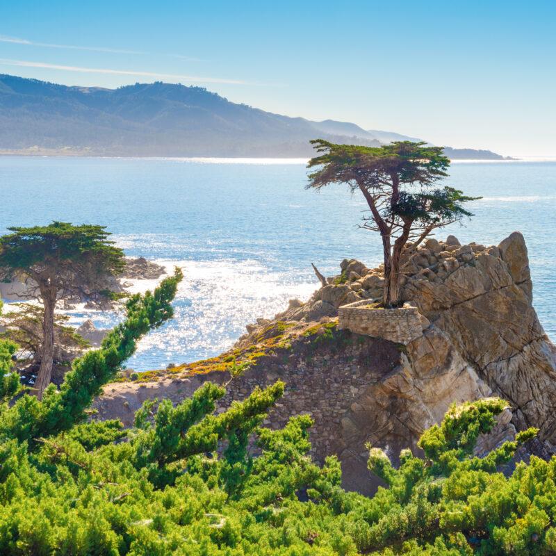 Stunning coastal views in Monterey, California.