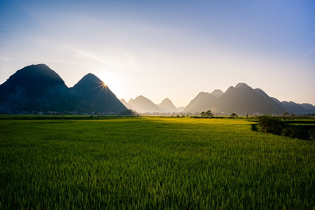 Sun rising over rice paddies with mountains in the distance, Sa Pa, Vietnam