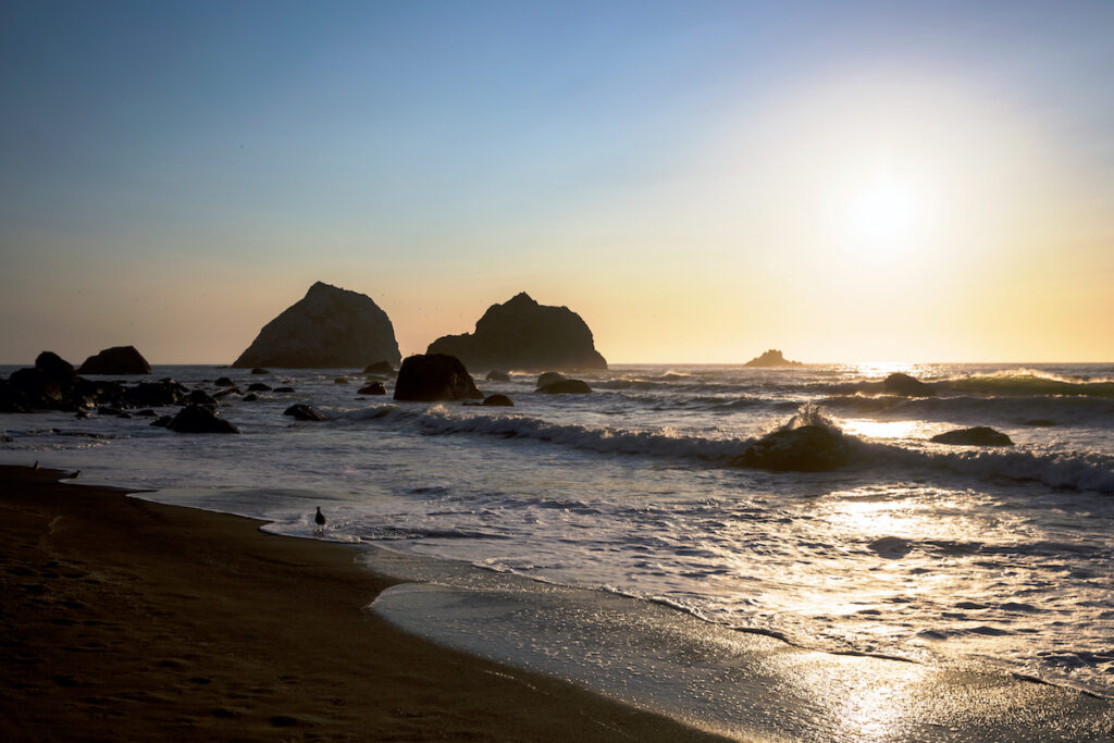 Sunset over a beach in Redwood National Park, California.