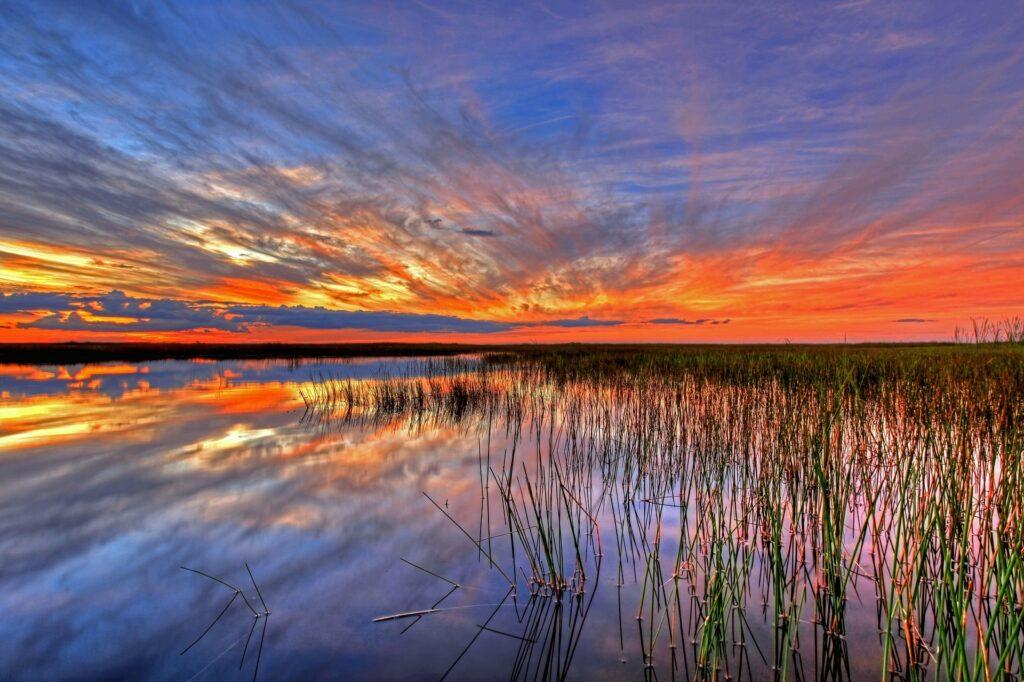 Sunset over the Florida Everglades