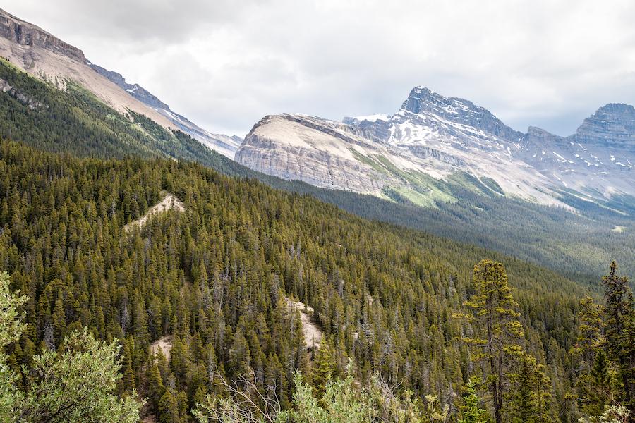 Sunwapta Pass in Jasper National Park.