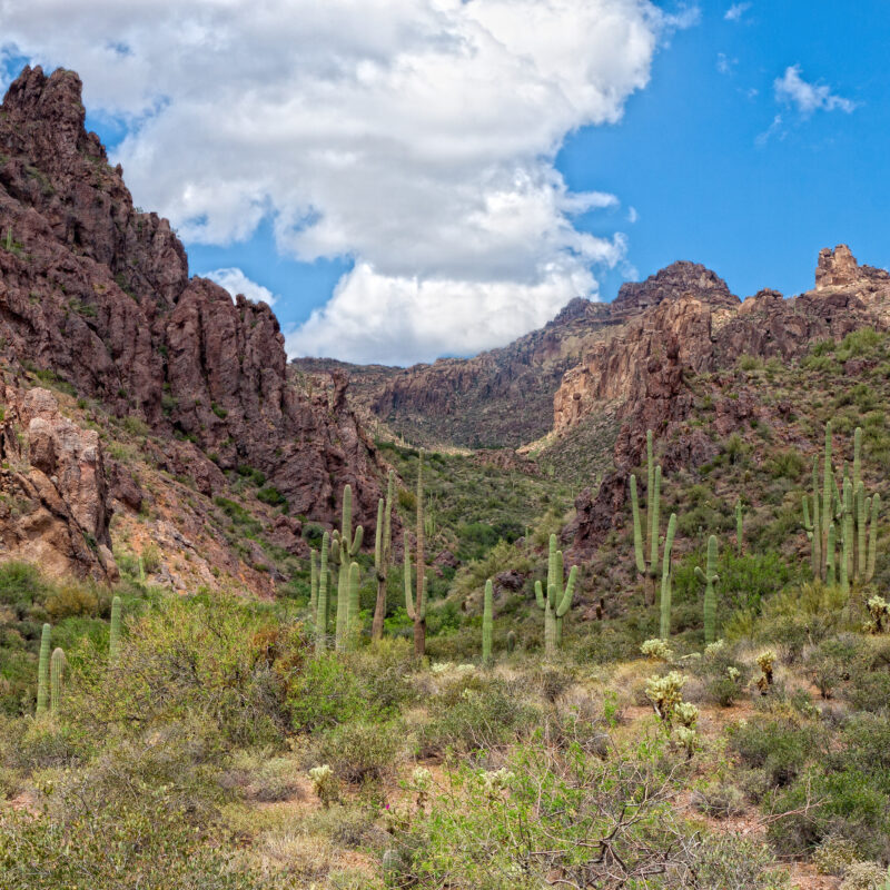 Superstition Mountain views near Apache Junction, Arizona.
