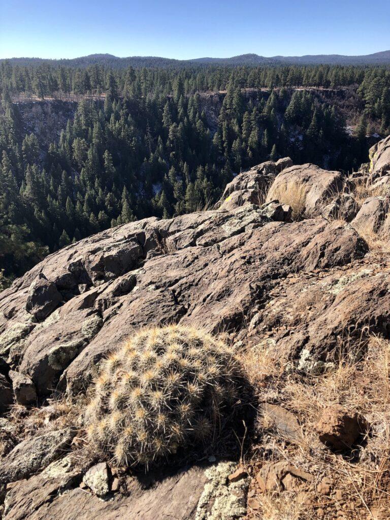 Sycamore Canyon in Arizona.