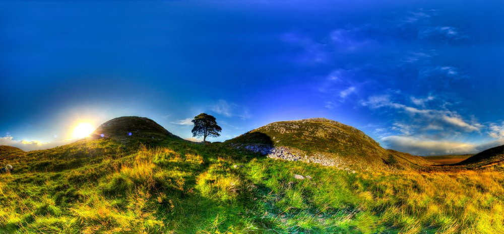 Sycamore Gap in Northumberland National Park.