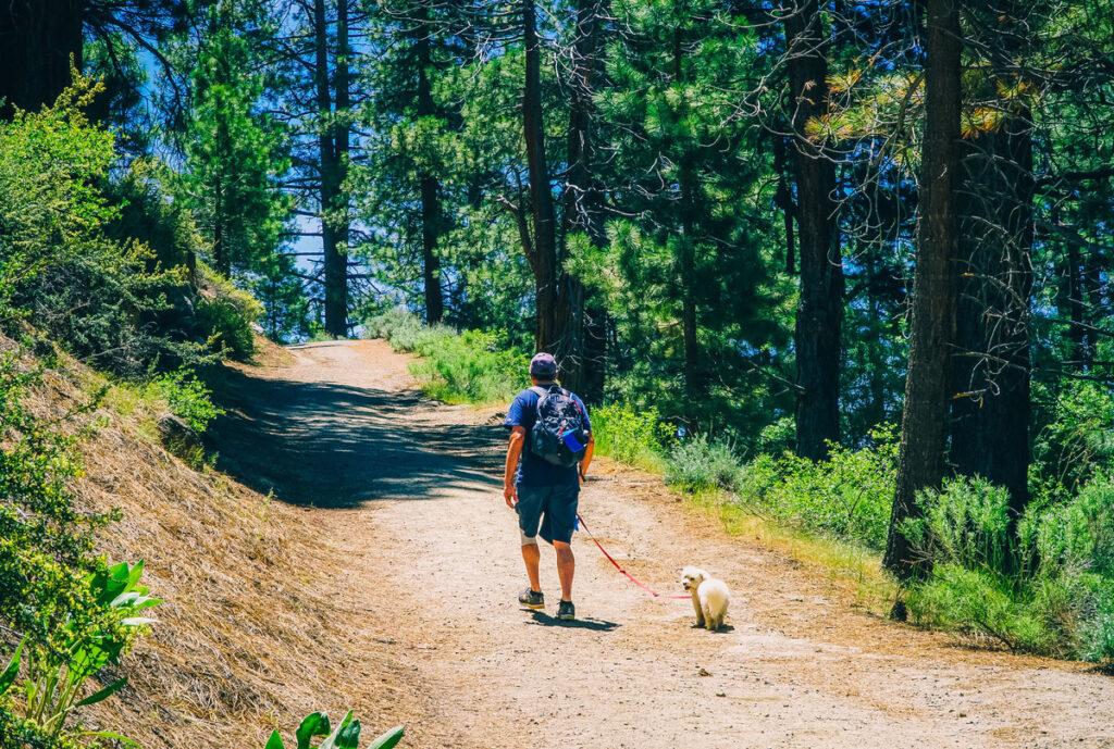Tahoe Rim Trail, Lake Tahoe.