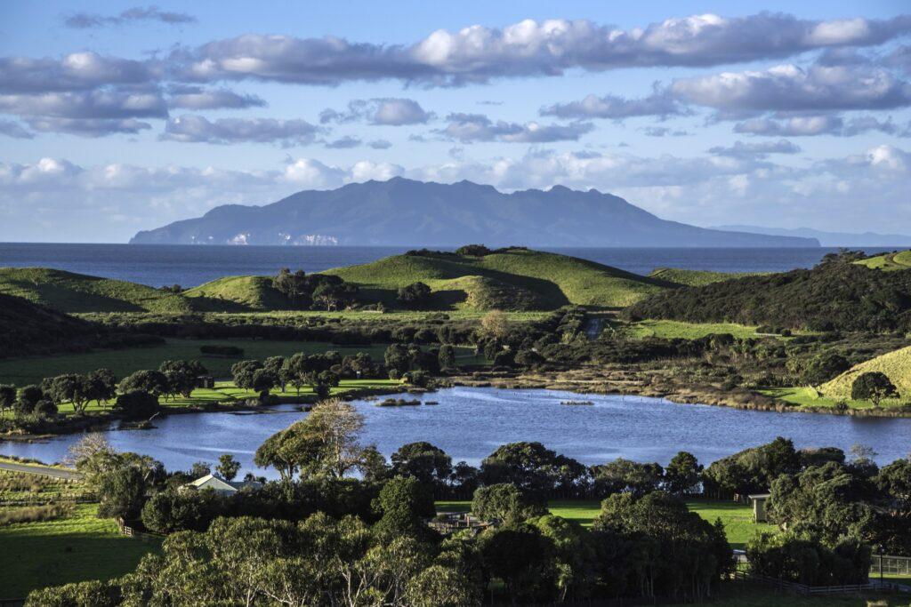 Tawharanui Regional Park in New Zealand.
