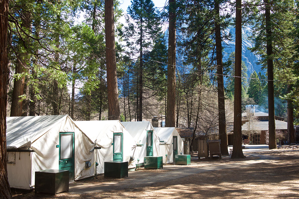Tents at Curry Village in Yosemite.