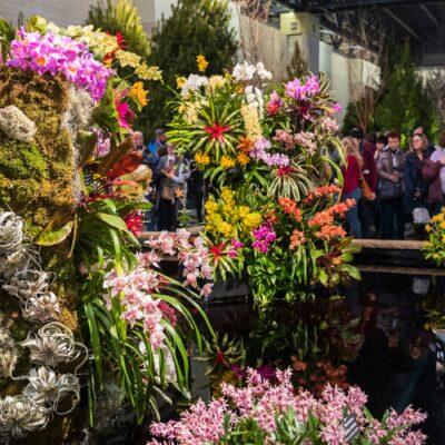 The 2019 Philadelphia Flower Show.