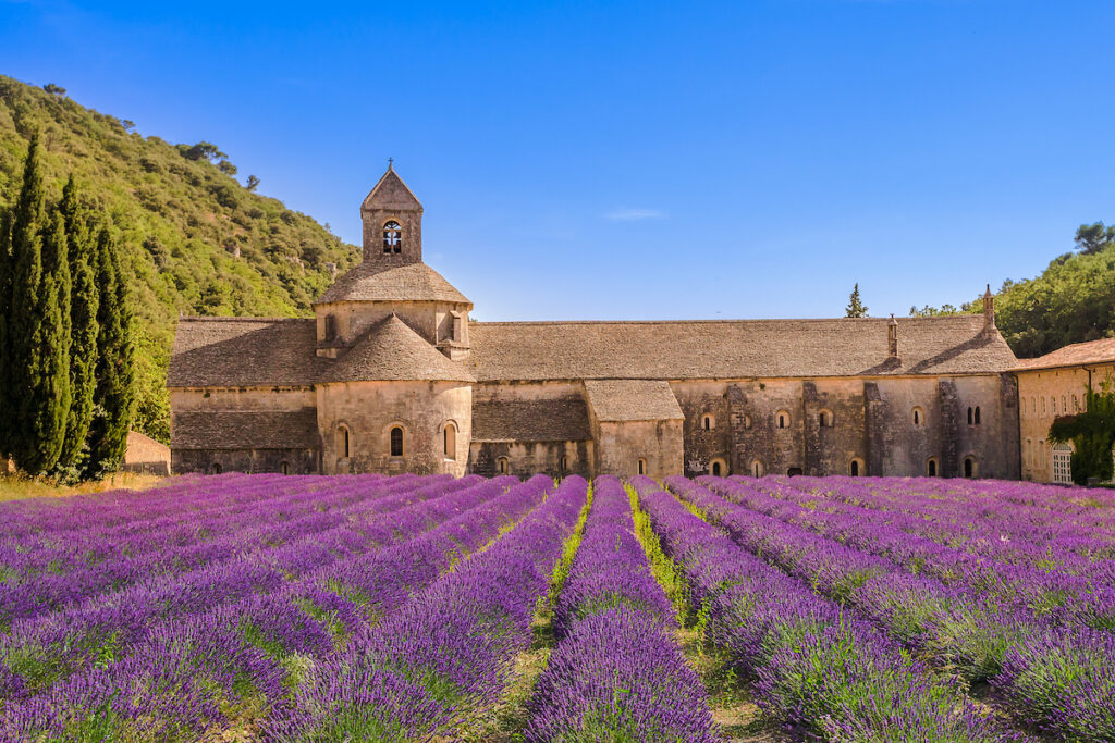The Abbey of Senanque in France.