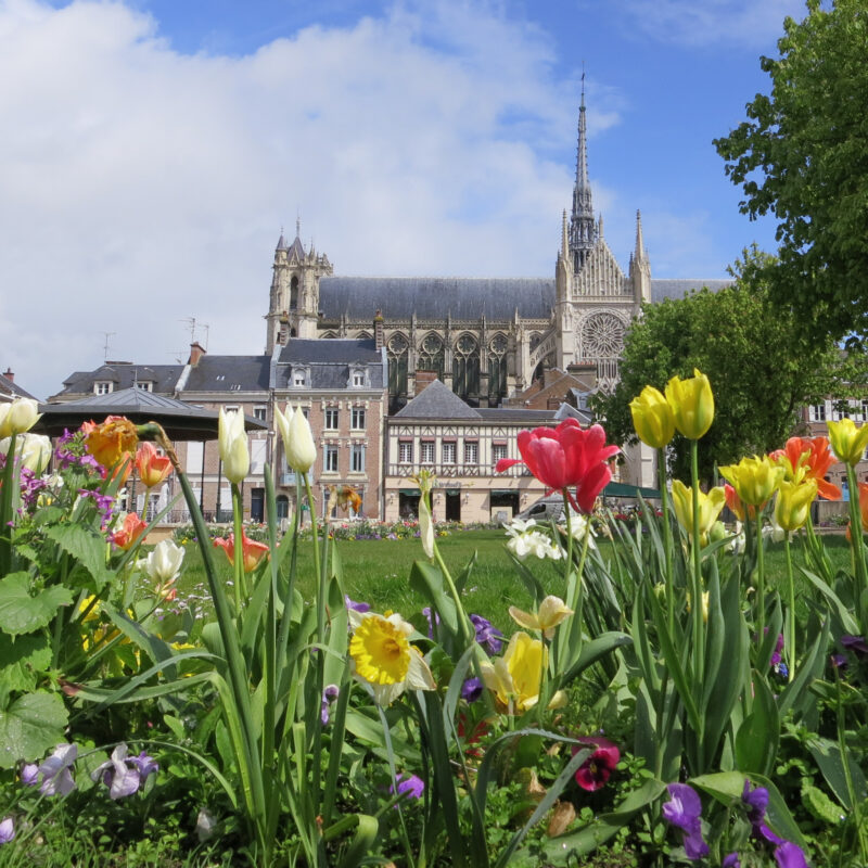 The Amiens Cathedral in France.